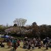 浜松城公園の大道芸