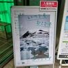 石川直樹 写真展「いつでもどこでも写ルンです」