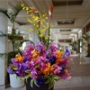 沖縄の高級ホテル「ザ・ブセナテラス」を体験するならシーズンオフの冬期がおすすめ!