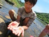 猛暑は川遊びで乗り切るスタイル