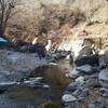 渓流釣り 春季キャンプ in 奥多摩