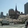 神戸市バス92系統で巡る「桜ツアー2018」