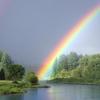 「虹の橋」について