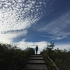 2016年 のんびりハイキング紅葉に浸かる鷲ヶ峰ひゅって泊への旅@霧ヶ峰 その1