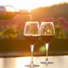 【コスパ】イタリアワインのおすすめ銘柄5選