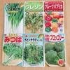 ベランダ菜園日記(4)種をまきました