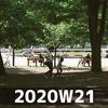 週報 2020W21