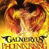 GALNERYUS 『PHOENIX RISING』 (2011)