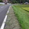 県道愛護の草刈り
