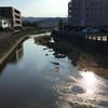町田川清掃