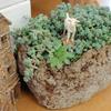 ブレビフォリウムの丘で景色を仰ぐ山羊を表現する「抗火石鉢」