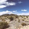 ラスベガスからカリフォルニアへ砂漠のドライブ ハイウェイ95