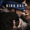 【映画】見えないものを見ようとして、睡魔に襲われる映画「バードボックス」【ネタバレ感想】