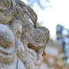 小松市の上荒屋八幡神社の狛犬は目が怖い