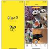「ドコノコ - いぬねこ写真アプリ」で癒される