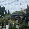 【表参道イタリアン】花と緑に囲まれた一軒家レストラン