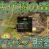 【MHWI】古代樹の森・キャンプ設営全4箇所の紹介!