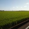 (長崎県)家から雲仙・島原まで、折り畳み自転車で行った話(途中輪行あり)