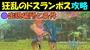 【モンハンストーリーズ2】 狂乱のドスランポス攻略 出現場所と条件 【モンスターハンターストーリーズ2 MHS2】