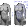 スカルプターのための美術解剖学18頁
