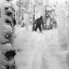 ロシアで起こった史上最恐にして謎多き遭難事件、「ディアトロフ峠事件(Dyatlov Pass incident)」とはいかなるものか?