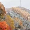 紅葉+雪が見せる景色とは?