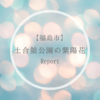 【福島市】土合舘公園の紫陽花はインスタ映え間違いなし!【あじさい公園】