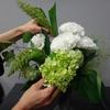 6/9(土)Flower Design「符符」さんによる日常使いの投げ込み花生け教室あります!