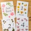 手作り月齢カードを作ってみました