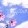 河合郁人さんの誕生日によせて