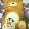 【ぺんちゃんスマホケース】 約2年10ヶ月ぶりにスマホカバーを交換~