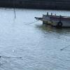 熊本港⇒有明海への影響は…