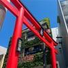 【2021.05 鎌倉旅行記②】2日目は鎌倉駅周辺・江ノ島観光!普段行かない美術館を訪れる旅。