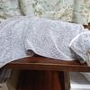 新しい畳表 きた~、写真でわかる新旧畳色