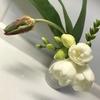 #こういう時こそお花を飾ろう