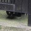 7月17日 杉並区和田で猫さま歩き とその情景