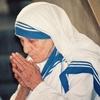 《マザー・テレサ記念ミサとカルカッタ報告会のお知らせ》