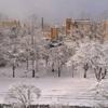 【東京旅行まとめ】北海道を離れたからって暖かいというわけでもなく。いいじゃん、札幌。