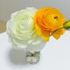 【お花がある暮らし】お花を飾るといいことが!