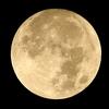 9月の「満月写経の会」は9月6日に行います。