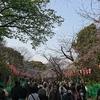上野東照宮に花見に行ってみた。(台東区上野公園)