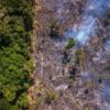アマゾンで、トルコの国土面積と同等の森林が消失