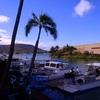 ファーストクラスで行くハワイ「 ダイビング・沈戦闘機F4コルセア号 2012③」