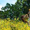 立川国営昭和記念公園のシャボン玉と向日葵。