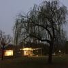 天野入華さん個展 crown for trees せをはやみ + .tt +天野入華 パフォーマンスありがとうございました!KAKAMIGAHARA STAND(各務原/岐阜)