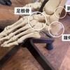 足首の骨を整え怪我防止