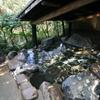【菊池市】菊池温泉 清流荘~ロケーションに一目惚れ!自然感じて至福のひと時