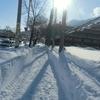 雪の道を歩きながら