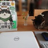 ダイソーのタブレットスタンドで、ショボいPC環境が改善された(>_<)