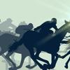 現役登録馬(2020年10月現在)